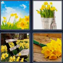 4 pics 1 word 8 letters daffodil