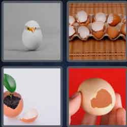 4 pics 1 word 8 letters eggshell