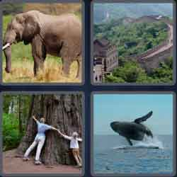 4 pics 1 word 8 letters enormous