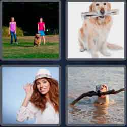 4 pics 1 word 8 letters fetching