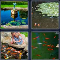 4 Pics 1 Word 8 Letters Fishpond