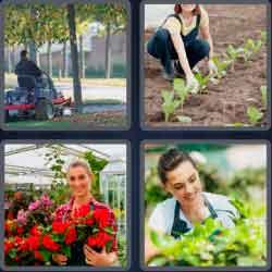 4 pics 1 word 8 letters gardener