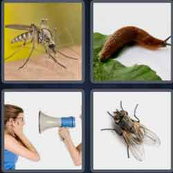4 pics 1 word 8 letters nuisance