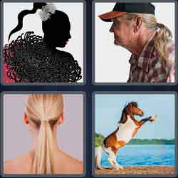 4 pics 1 word 8 letters ponytail