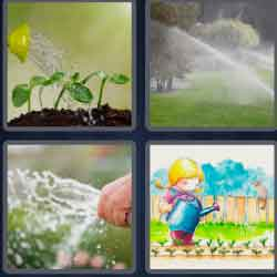 4 pics 1 word 8 letters watering
