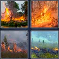 4 pics 1 word 8 letters wildfire