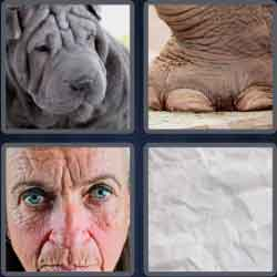 4 pics 1 word 8 letters wrinkled