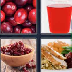 4 Pics 1 Word 9 Letters Cranberry