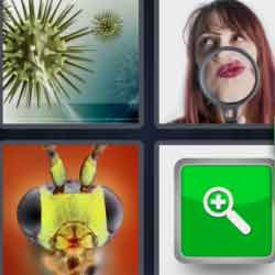 4 Pics 1 Word 9 Letters Magnified