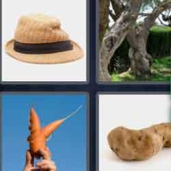 4 Pics 1 Word 9 Letters Misshapen
