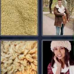 4 Pics 1 Word 9 Letters Sheepskin