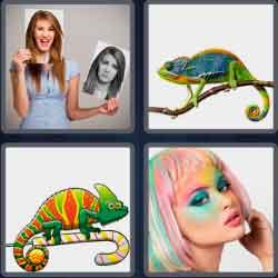 4-pics-1-word-9-letters-chameleon