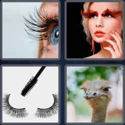 4 Pics 1 Word 9 Letters Eyelashes