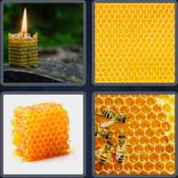 4-pics-1-word-9-letters-honeycomb