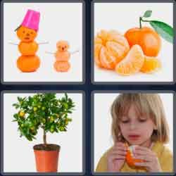 4-pics-1-word-9-letters-tangerine